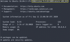 Ubuntu welcome screen after login
